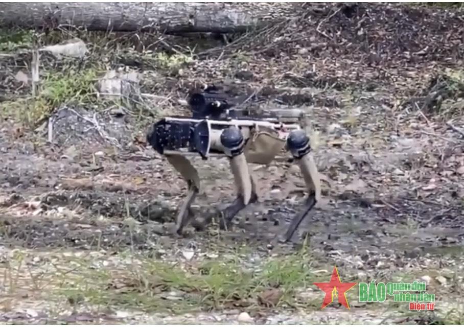 Chó robot Mỹ gắn súng trường